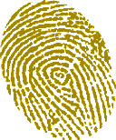 A fingerprint dusted in yellow
